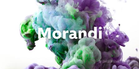 Morandi01