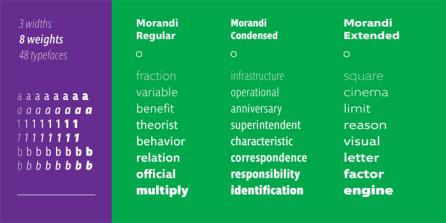 Morandi02
