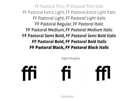 FF Pastrol2