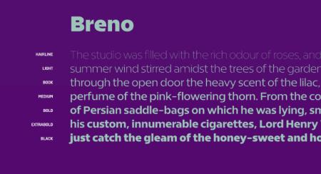 Breno-nr.2